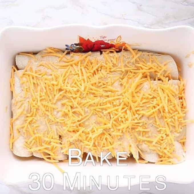 Chicken enchiladas shown rolled up in a white baking pan with shredded cheese on top.