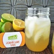 Homemade Soda Recipes: Homemade lemon lime soda is a great sugar free alternative to store bought soda. Kids have a blast mixing their own flavor combinations with the fruit of their choice. Perfect for sleep overs and or as a kids cooking activity.