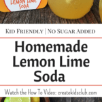 Homemade Soda Recipes: Homemade soda is a great sugar free alternative to store bought soda. Kids have a blast mixing their own flavor combinations with the fruit of their choice. Perfect for sleep overs and or as a kids cooking activity.