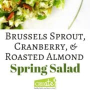 Brussels sprout, Cranberry, & Roasted Almond Salad the perfect Spring salad or Summer salad. This simple salad recipe does not get soggy, the dressing can go on right away. Easy to make using kitchen hack provided for easily shredding Brussels sprouts. A dish to pass that will be a favorite.