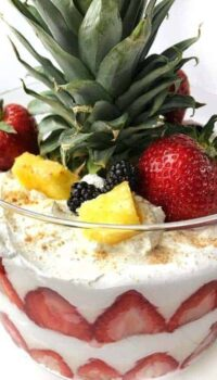 a fruit trifle shown up close