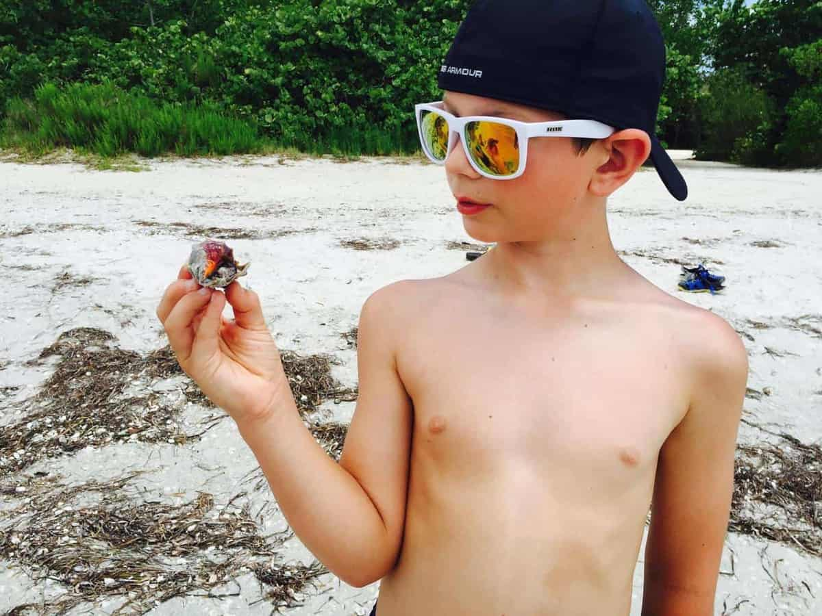 A young boy is holding a shell looking at it on the beach wearing a hat and sunglasses.