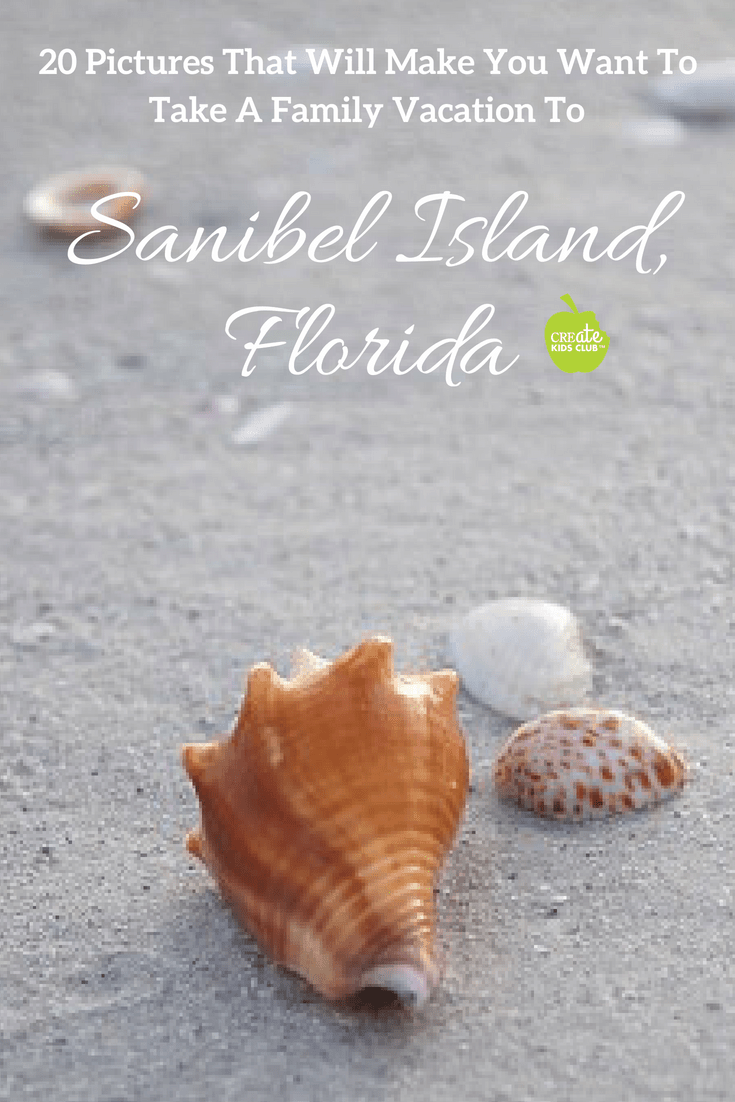 The best US vacation destination for families from toddlers to teens!  Sanibel Island is one of the best family vacation destinations in the US.  If you're looking to travel the United States with kids this summer, plan your vacation to Sanibel Island,  Florida.  Check out the top 10 things to do on the islands with kids! #sanibelisland #familyvacation #USfamilytravel #budgetvacation #bestfamilyvacation #florida