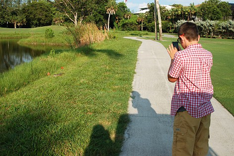 A boy taking a picture of an iguana.