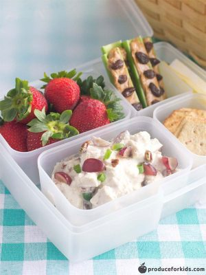 A clear 4 compartment lunch container with chicken salad, strawberries, whole grain crackers, and celery with peanut butter and raisins in it on a teal and white checkered napkin.