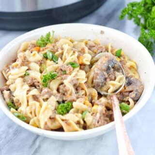 Instant pot beef stroganoff recipe a ground beef stroganoff recipe