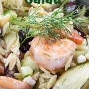 Greek Pasta salad, orzo pasta recipe, prawn pasta recipe