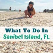 Things to do in Sanibel Island with kids