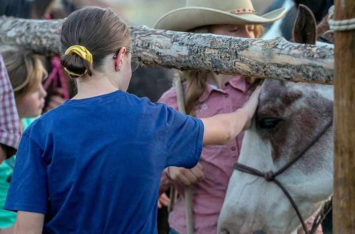 A young girl being shown petting a horse through a wooden fence on a Colorado vacation at a a family dude ranch.