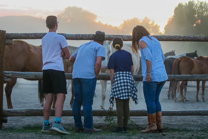 A family of four being shown on a Colorado ranch standing on the outside of a wooden fence petting brown horses as the sun sets.
