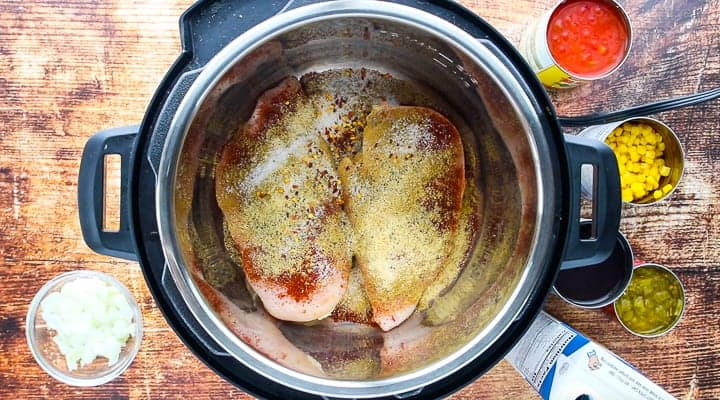 Seasoned raw chicken in an instant pot