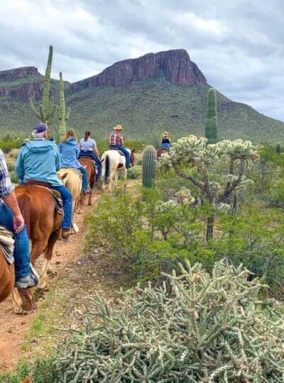 A group of people riding horses down a dirt path in the dessert