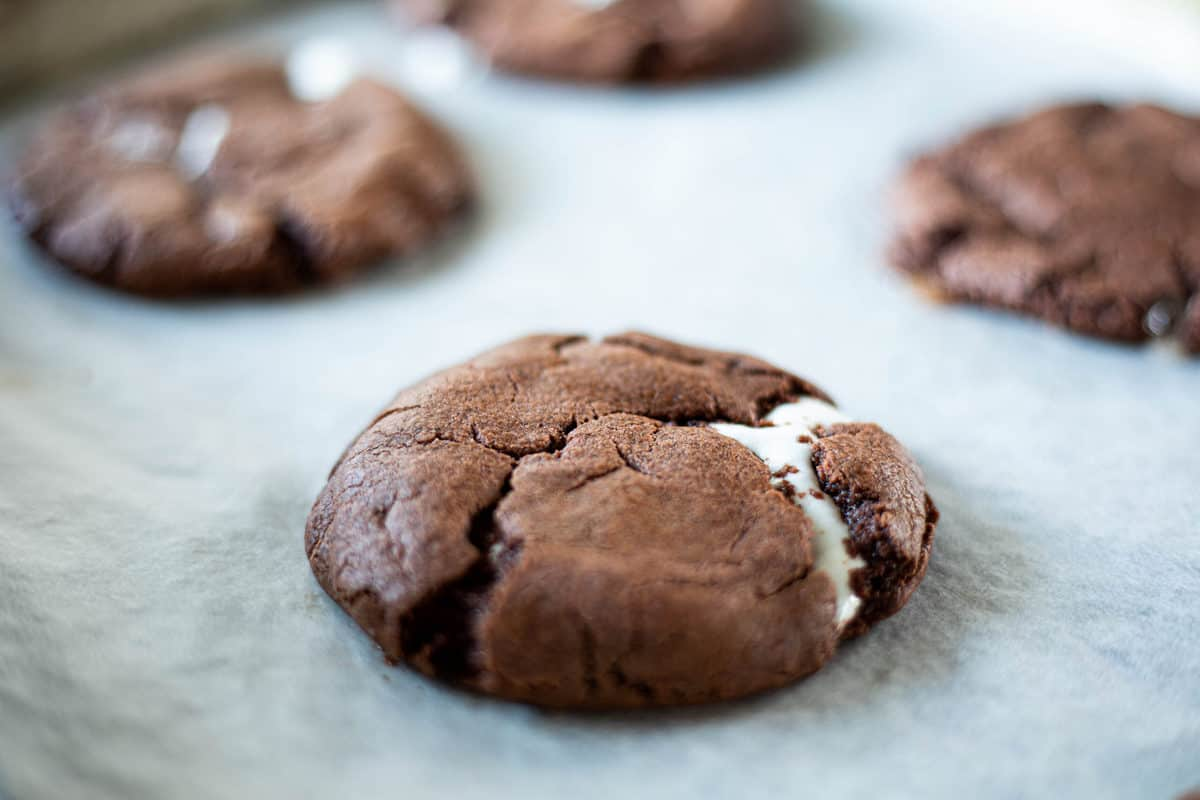 Chocolate cookies being shown on a parchment lined baking sheet.
