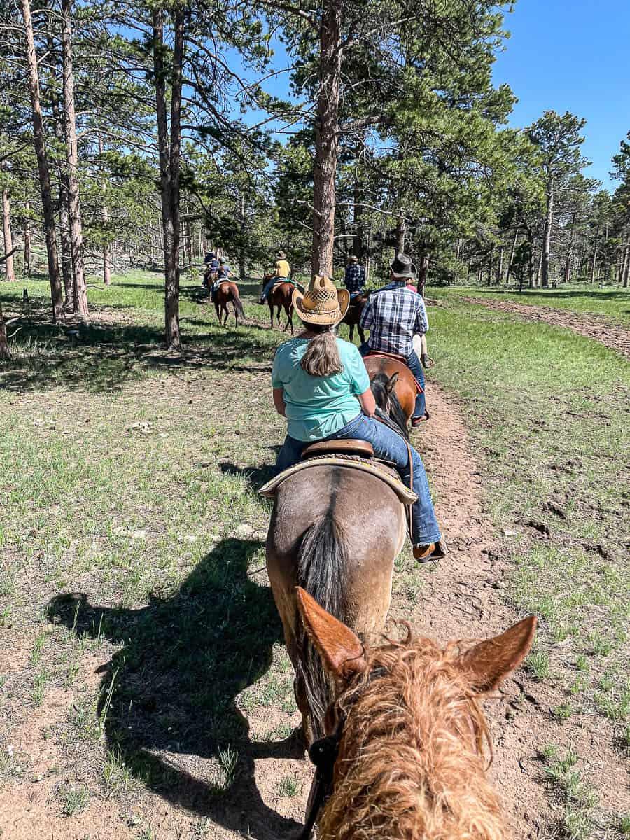 ranch guests riding horses